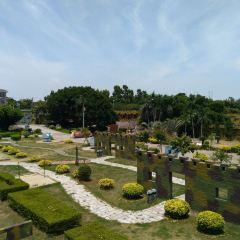 Zhainei Ancient Banian Park User Photo