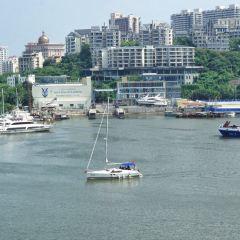 鴻洲國際遊艇會出海體驗用戶圖片