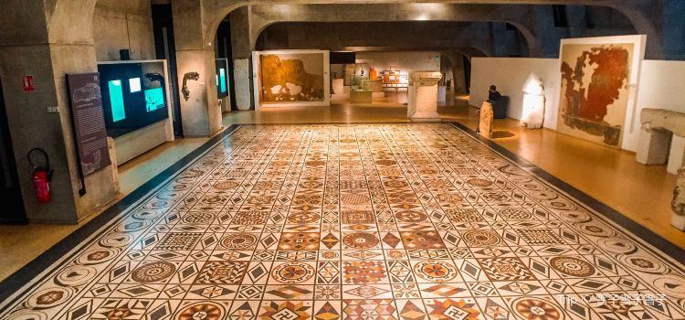 高盧-羅馬文化博物館2
