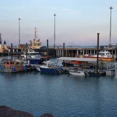 Darwin Wharf Precinct User Photo
