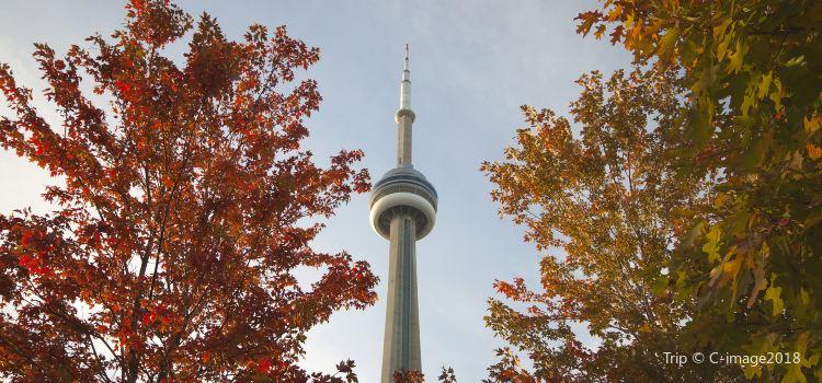 加拿大國家電視塔3