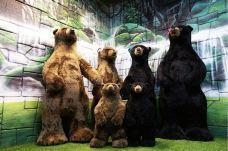 泰迪熊博物馆-芭堤雅-AIian