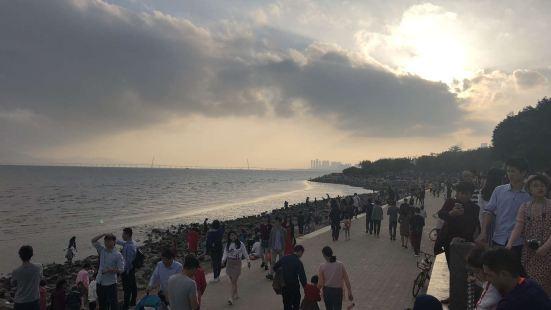 深圳灣公園海韻公園-休息亭