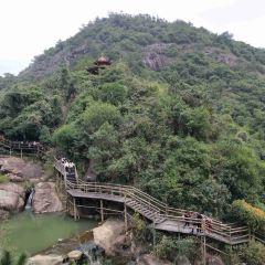 Purple Lotus Forest Resort User Photo