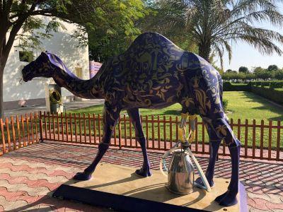 Dubai Camelicious Farm