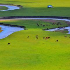 呼倫貝爾大草原用戶圖片
