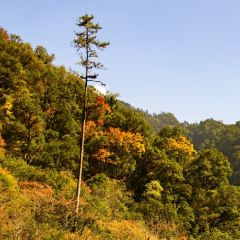 Dongla Mountain Canyon User Photo