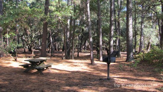 Hickory Nut Mountain Campground