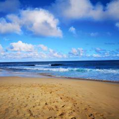 벨로우즈 필드 해변공원 여행 사진