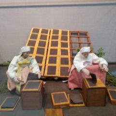김 박물관 여행 사진