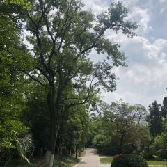 唐閘公園用戶圖片