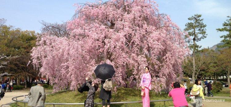 Okazaki Park1