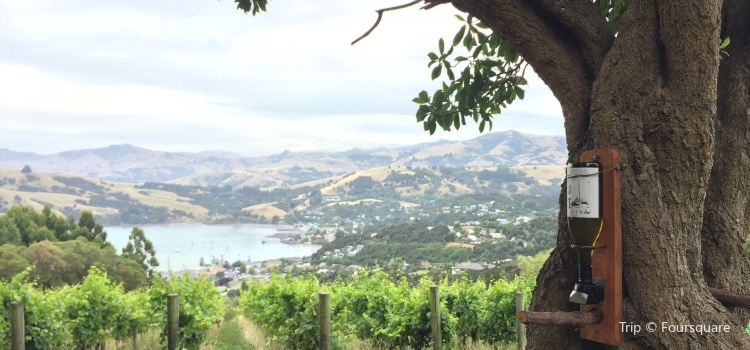 Rosebank Estate Winery3