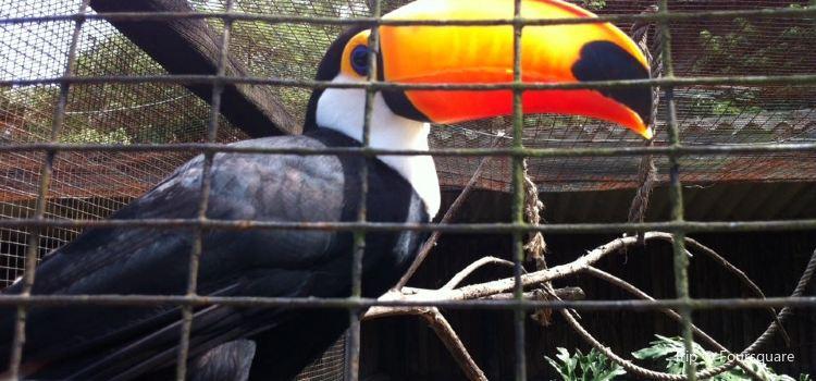 Umgeni River Bird Park2