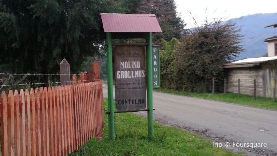 Molino Grollmus