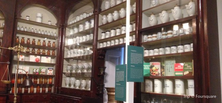 Medical Museion1
