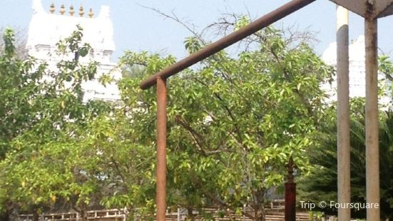 Basar Saraswati Temple
