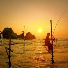 科格勒高蹺漁民用戶圖片