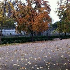 Parque Quinta Normal User Photo