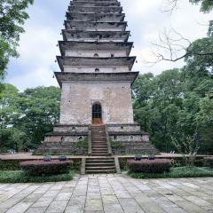 Leshan Giant Buddha User Photo