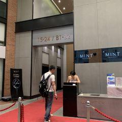 M1NT User Photo