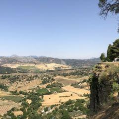 Alameda del Tajo User Photo