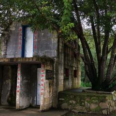 珍寶島用戶圖片