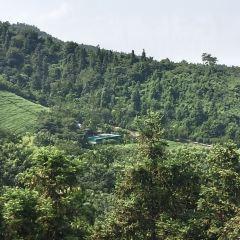 Meijie Mountain Hot Spring User Photo