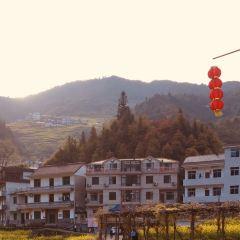 江南小布達拉宮用戶圖片