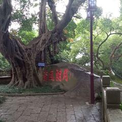 月朗風清榕用戶圖片