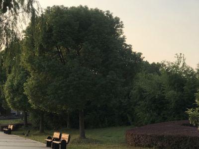 융캉 공원