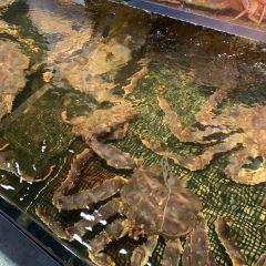 札幌外圍海鮮市場用戶圖片
