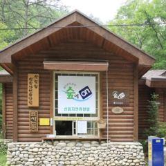 용인자연휴양림 여행 사진