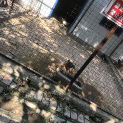 Wusheng Garden User Photo