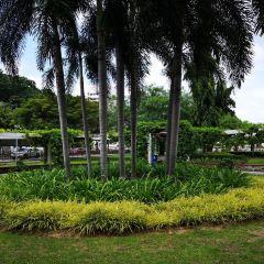 City Park用戶圖片