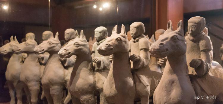 漢兵馬俑博物館3