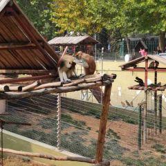 金寶樂園用戶圖片