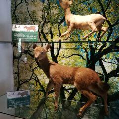 타이루거 국립공원 관광안내소 여행 사진