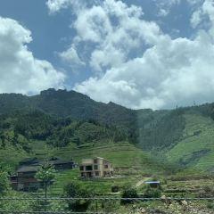 Zhupo Mountain Forest Park User Photo