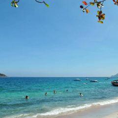 Mun Island Diving Tour User Photo