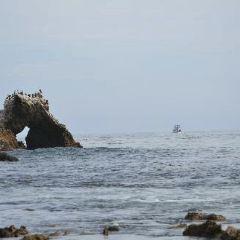 Scripps Institute of Oceanography Coastal Reserve用戶圖片