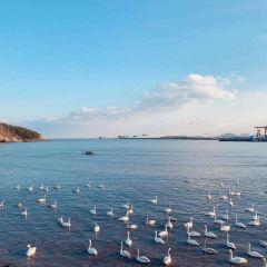 Yandunjiao User Photo