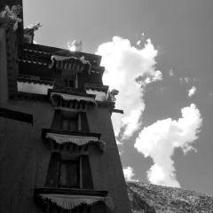 拉蔔楞寺用戶圖片