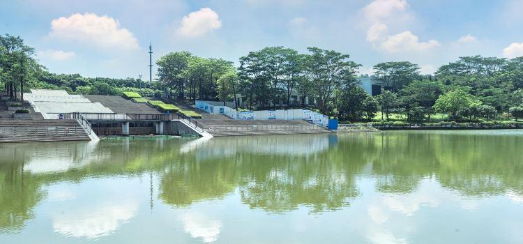 Dongguan Botanical Garden