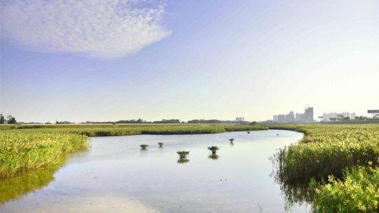Fangchenggang Wetland Park