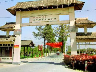大圩生態農業旅遊景區