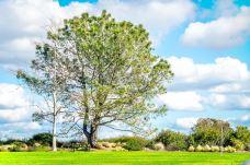 Moulton Meadows Park-橙县-尊敬的会员