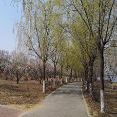 Fushun City Crescent Island Ecological Park User Photo