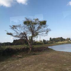 神山用戶圖片
