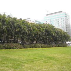 金蓮花廣場用戶圖片